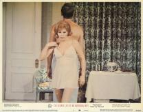 The Secret Life of an American Wife (1968)