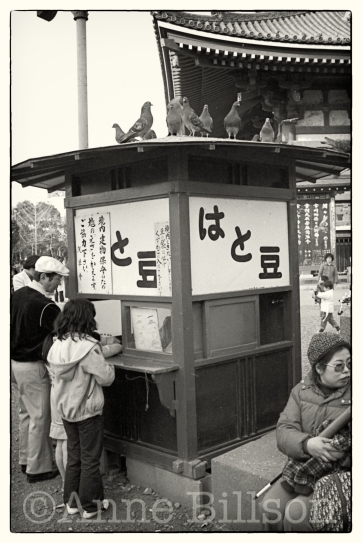 I think this is a kiosk selling hato beans to feed the pigeons.
