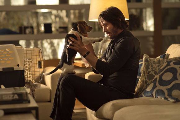 john-wick-450907l-imagine