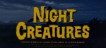 NightCreatures