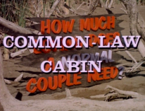 CommonLaw03