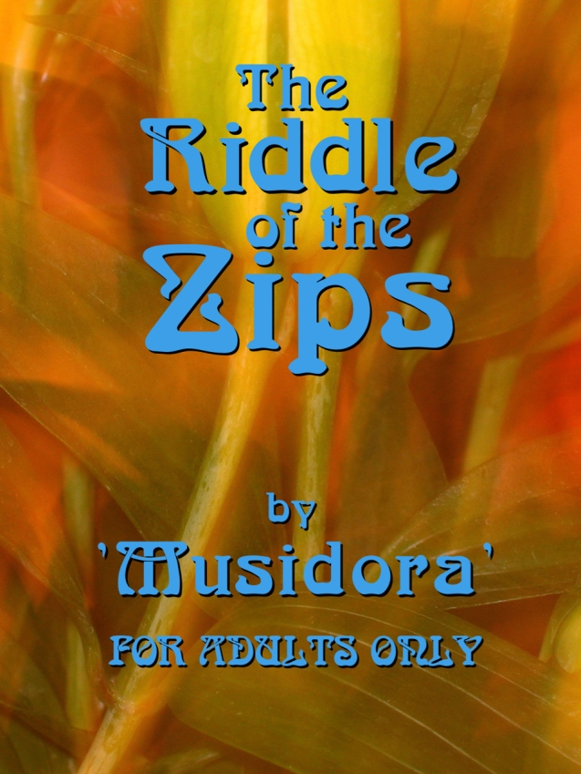 riddle cover 2