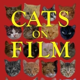 cropped-cats-on-film-test-sat-1-copy
