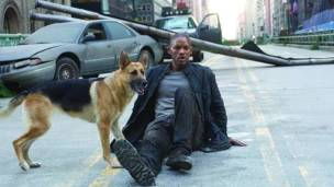 i am legend dog